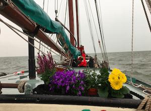 kaat mossel bloemen vrouwaanboord.nl
